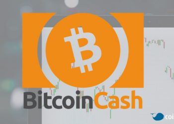 Bitcoin Cash'in yükselişi