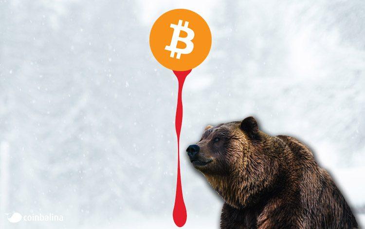 Ayı piyasası