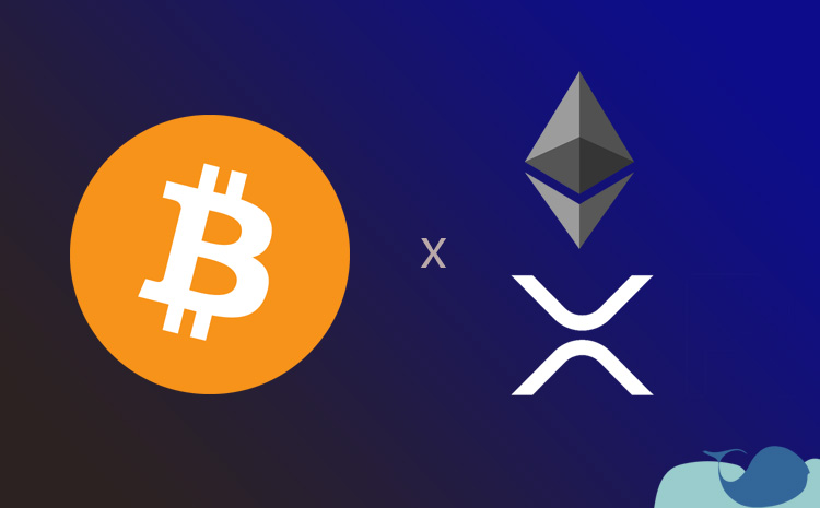 Bitcoin mi Ripple mı? Bitcoin mi Ethereum mu?
