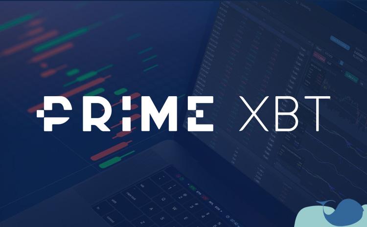 PrimeXBT nasıl kullanılır?