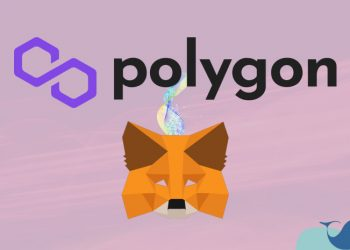 MetaMask Polygon ağı ekleme
